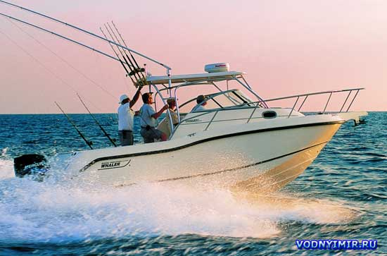 «Бостонский Китобой» — катер рыболовный «Boston Whaler 255 Conquest»